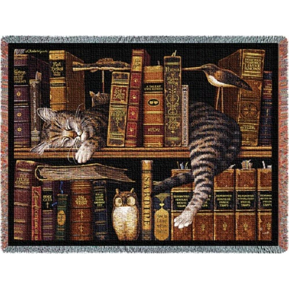 кот на полке cat on the shelf  № 1697990  скачать